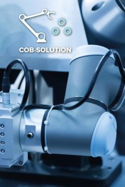 Cob-Solution